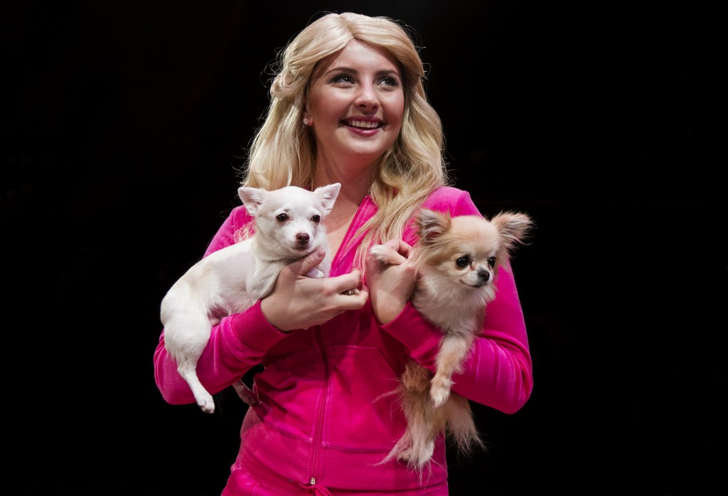 legally blonde critique Shallow socal sorority bimbo elle woods is supposed to be, like, totally smarter than she looks in legally blonde, a paint-by-numbers big screen sitcom about a.
